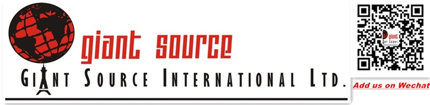Giant Source International Ltd.